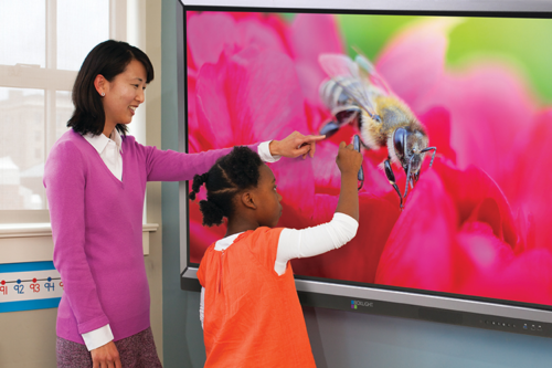 boxlight procolor interactive flat panel display