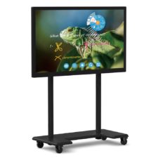 hovercam centerstage flat panel display