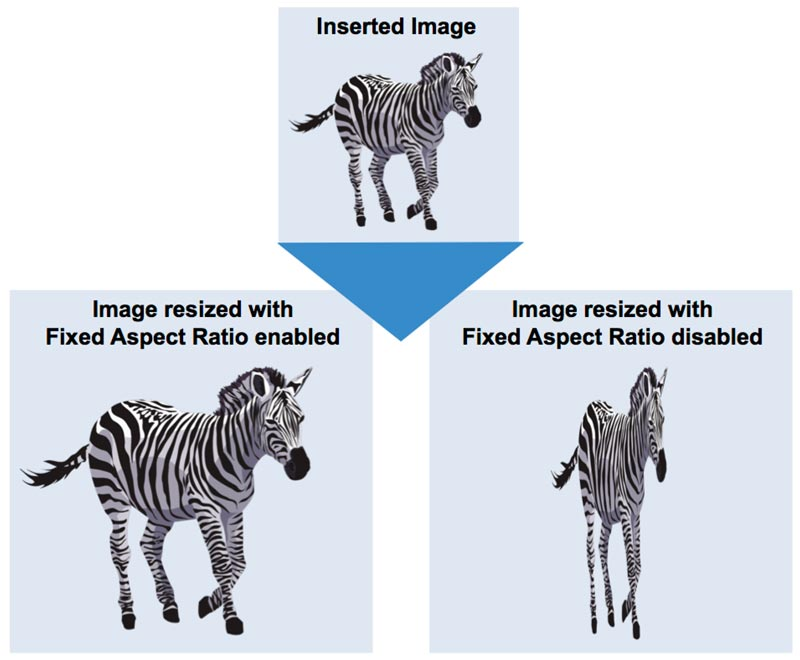 fixed aspect ratio in mimiotudio